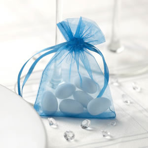Turquoise Organza Favour Bags