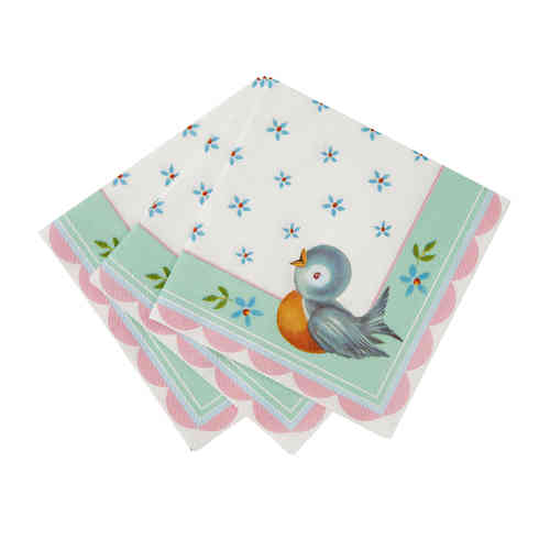 Baby on Board - Baby Shower Napkins