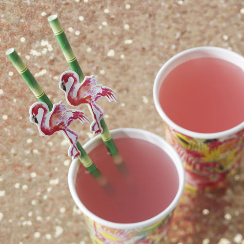 Tropical Flamingo Paper Straws