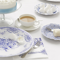Blue_Porcelain_Party Range