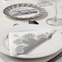 PPS_Party_Porcelain_Silver_Range