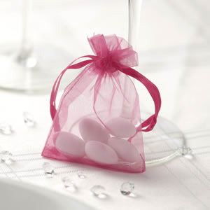 Hot Pink Organza Favour Bags
