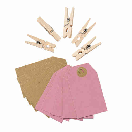 Mini Wooden Pegs & Tags