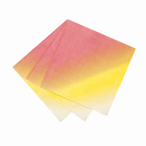 Floral Fiesta - Ombre Paper Napkins
