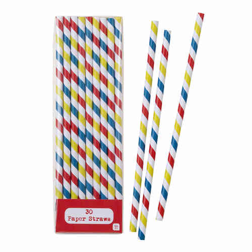 Multi-Coloured Striped Paper Straws