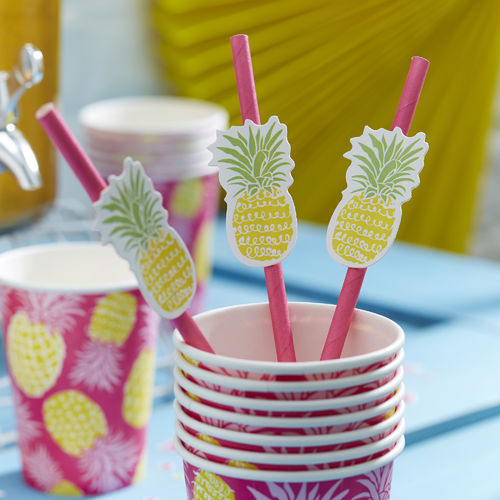 Summer Fruits - Pineapple Straws